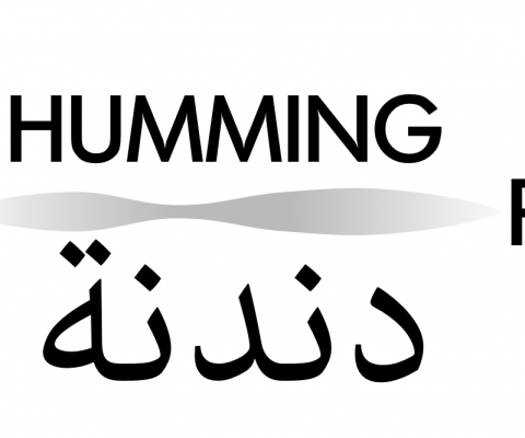 Syrian Humming Project